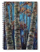 Aspen Forest In The Rocky Mountain Spiral Notebook