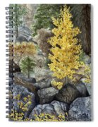 Aspen Gold Spiral Notebook
