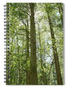 Aspen Green Spiral Notebook