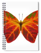 Aspen Leaf Butterfly 2 Spiral Notebook