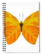 Aspen Leaf Butterfly 3 Spiral Notebook