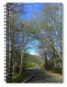 Aspen Lined Road Spiral Notebook
