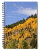 Aspen Ridge San Juan Mountains Spiral Notebook