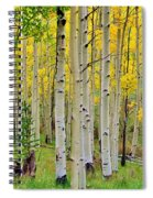 Aspen Slope Spiral Notebook