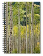 Aspen Stand Spiral Notebook
