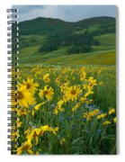 Aspen Sunflower And Mountain Landscape Spiral Notebook