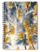 Aspen Tops Towards The Sky Vintage  Spiral Notebook