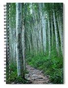 Aspen Trails  Spiral Notebook