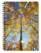 Aspen Tree Canopy 2 Spiral Notebook