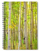 Aspen Tree Forest Autumn Time Portrait Spiral Notebook