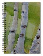 Aspen Trunks Spiral Notebook