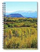 Aspen Valley Spiral Notebook