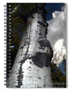 Aspens And A Cool Breeze Spiral Notebook