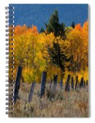 Aspens And Fence Spiral Notebook