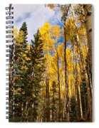 Aspens In Santa Fe 3 Spiral Notebook