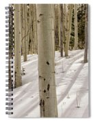 Aspens In Winter 2 Panorama - Santa Fe National Forest New Mexico Spiral Notebook