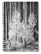 Aspens Ir 0713 Spiral Notebook