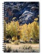 Aspens Spiral Notebook