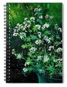 Asperules Spiral Notebook