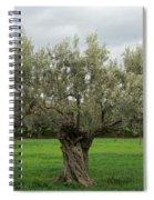 Aspropyrgos3 Spiral Notebook