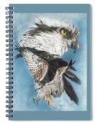 Assail Spiral Notebook