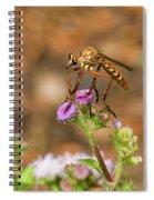 Assasin Fly Spiral Notebook
