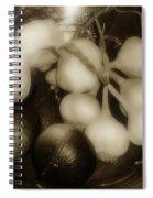 Assorted Alliums Spiral Notebook