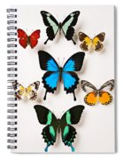 Assorted Butterflies Spiral Notebook