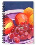 Assorted Fruit Spiral Notebook