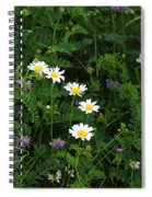 Aster And Daisies Spiral Notebook