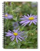 Aster Spiral Notebook
