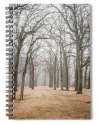 Path To Asylum Spiral Notebook