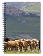 Castelluccio Di Norcia, Parko Nazionale Dei Monti Sibillini, Italy Spiral Notebook