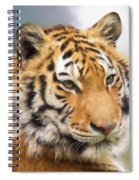 At The Center - Tiger Art Spiral Notebook