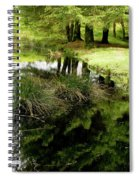 At The Edge Of The Forest Pond. Spiral Notebook