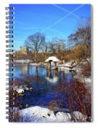 At The Frozen Lake Spiral Notebook