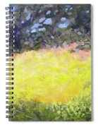 At The Plateau Spiral Notebook