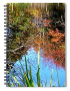 At The Pond Spiral Notebook