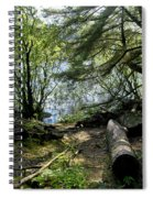 At The Water Edge. Spiral Notebook
