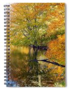 At The Water's Edge Spiral Notebook