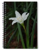 Atamasco Lily Spiral Notebook