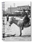 Atlantic City: Donkey Spiral Notebook
