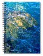 Atlantis Spiral Notebook