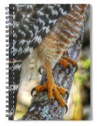 Attention To Detail I Spiral Notebook