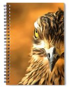 Attitude...with Feathers Spiral Notebook