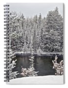 Au Sable River Overlook Spiral Notebook