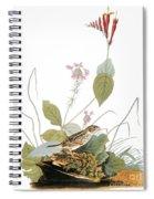 Audubon: Bunting Spiral Notebook
