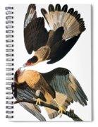 Audubon: Caracara, 1827-38 Spiral Notebook