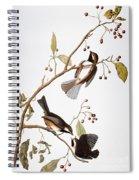 Audubon: Chickadee, (1827-1838) Spiral Notebook