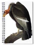 Audubon: Condor Spiral Notebook